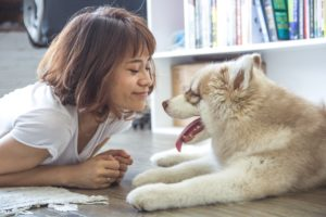 How to Deal With Asthma When Living With Pets