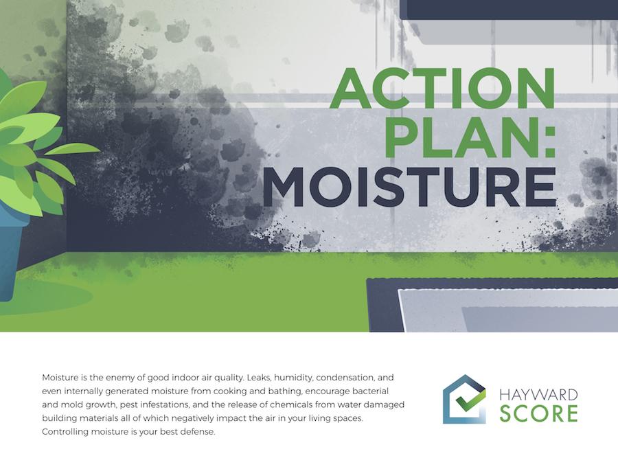 Action Plan:  Moisture