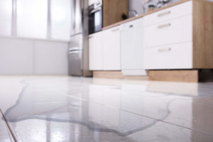 """After the Flood: What Should You Do About """"Minor"""" Water Damage?"""