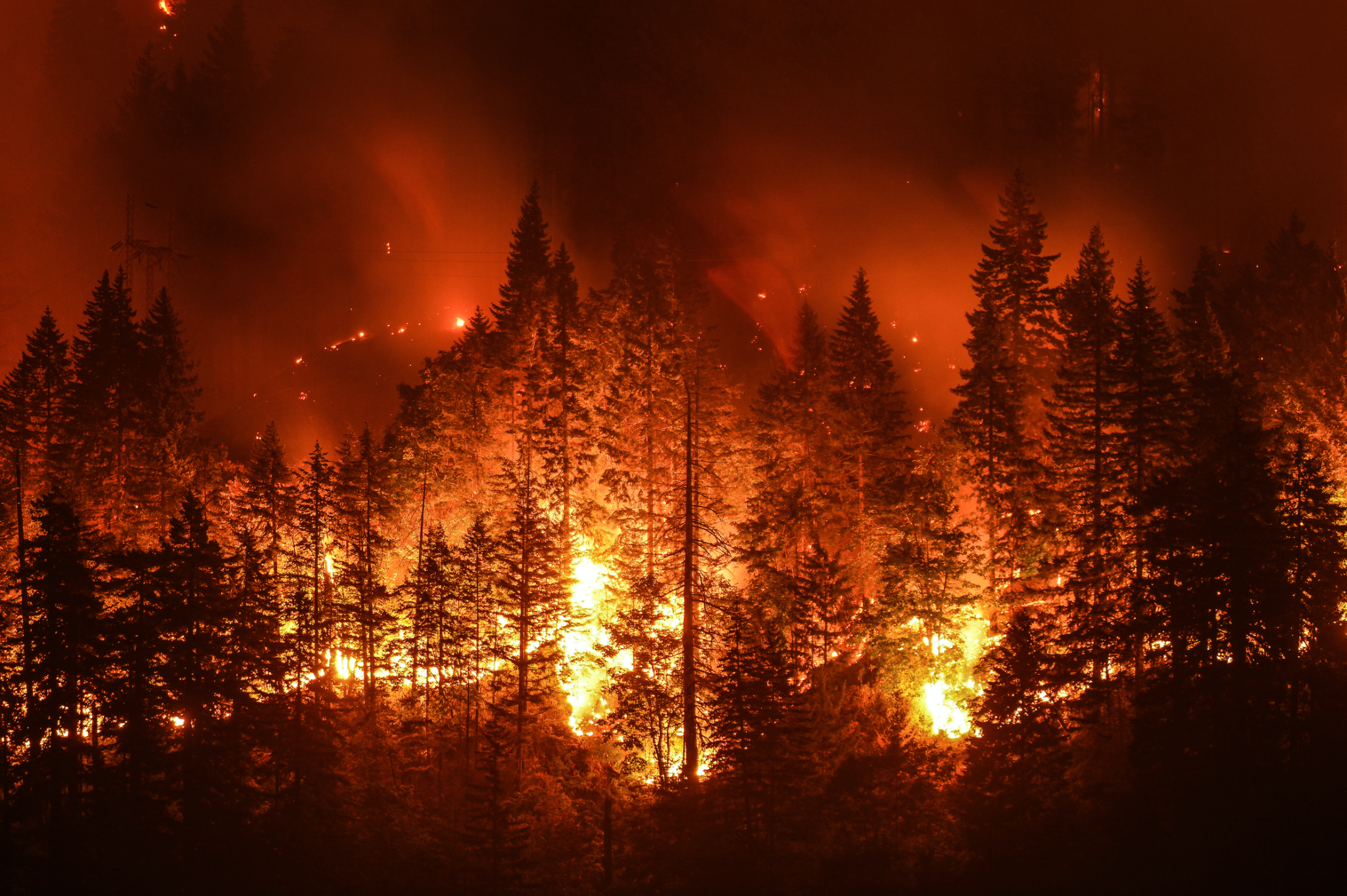 Stay Healthy During Wildfires